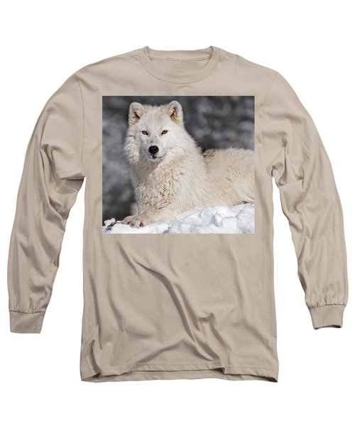 Arctic Wolf... Long Sleeve T-Shirt