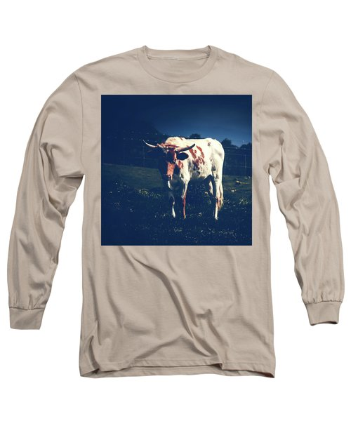 Long Sleeve T-Shirt featuring the photograph Midnight Encounter by Sharon Mau