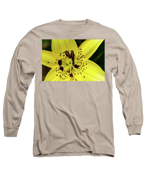 Asiatic Lily Long Sleeve T-Shirt by Jay Stockhaus