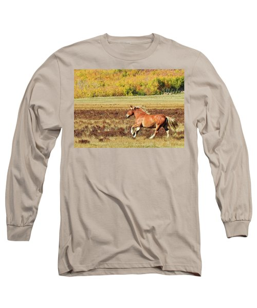 Aspen And Horsepower Long Sleeve T-Shirt