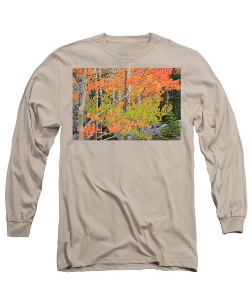 Long Sleeve T-Shirt featuring the photograph Aspen Stoplight by David Chandler