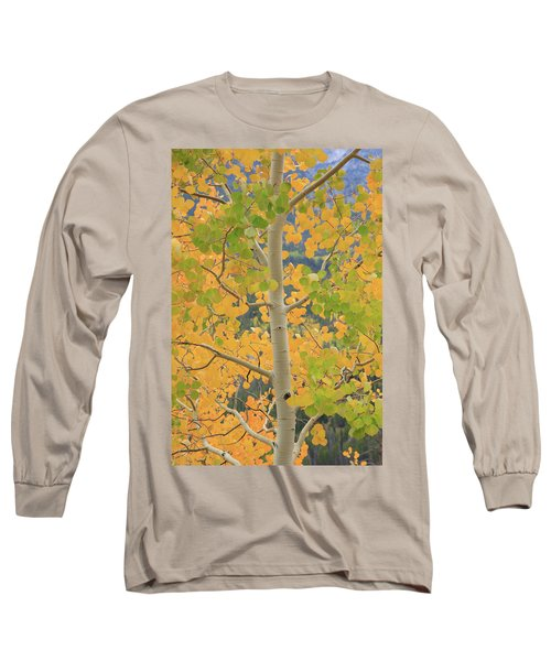 Long Sleeve T-Shirt featuring the photograph Aspen Watching You by David Chandler