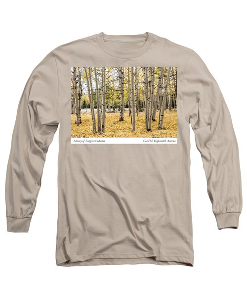 Long Sleeve T-Shirt featuring the photograph Aspens In Conejos County In Colorado, Near The New Mexico Border by Carol M Highsmith