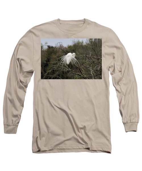 Attractive Plumage Long Sleeve T-Shirt