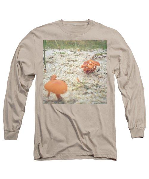 Auf Pilzjagd.  #pilze #sandboden Long Sleeve T-Shirt