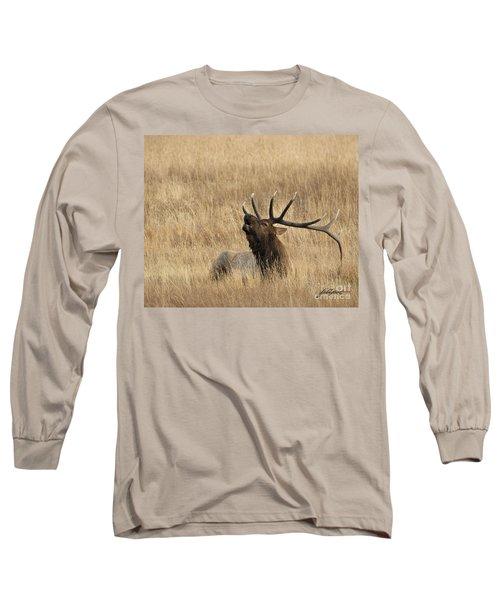 Autumn Song Long Sleeve T-Shirt