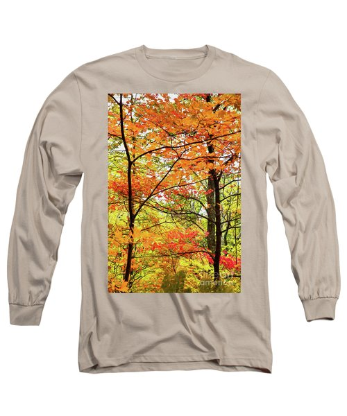 Long Sleeve T-Shirt featuring the painting Autumn Splendor Fall Colors Leaves And Trees Ap by Dan Carmichael