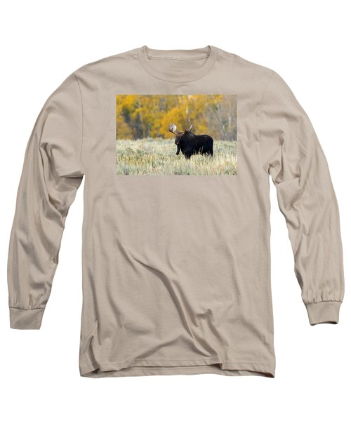 Autumn Splendor II Long Sleeve T-Shirt