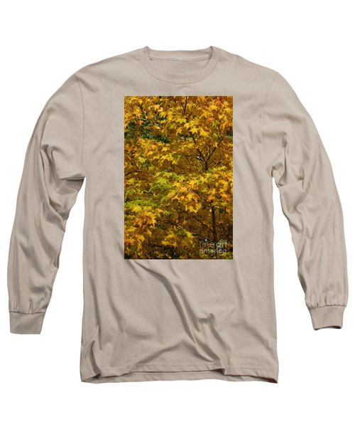 Autumnal Leaves And Trees 2 Long Sleeve T-Shirt