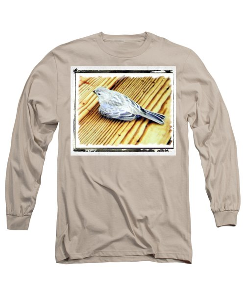 Baby Blue Jay Long Sleeve T-Shirt