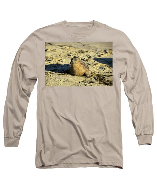 Baby Seal In Sand Long Sleeve T-Shirt