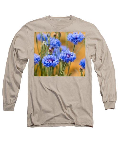 Bachelor Buttons In Blue Long Sleeve T-Shirt