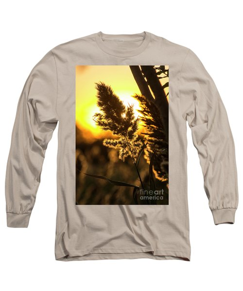 Long Sleeve T-Shirt featuring the photograph Backlit By The Sunset by Zawhaus Photography