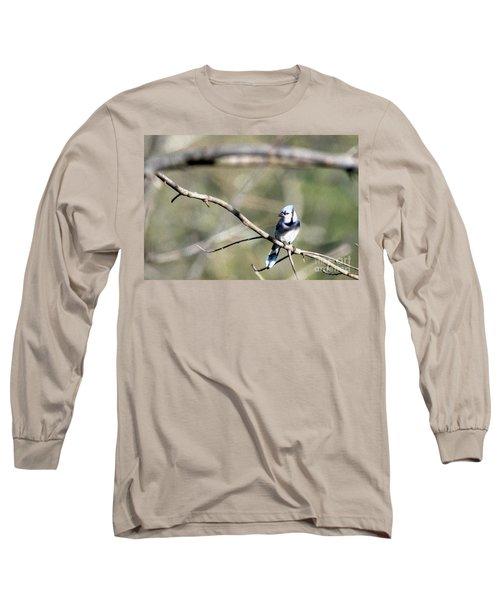 Backyard Blue Jay Oil Long Sleeve T-Shirt