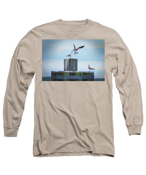 Battle Of The Gulls Long Sleeve T-Shirt