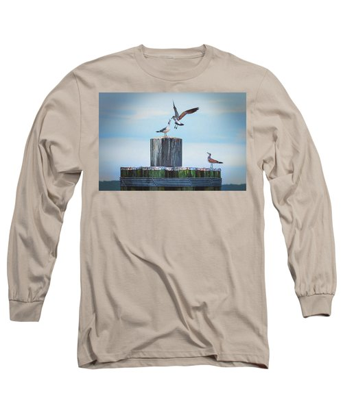 Battle Of The Gulls Long Sleeve T-Shirt