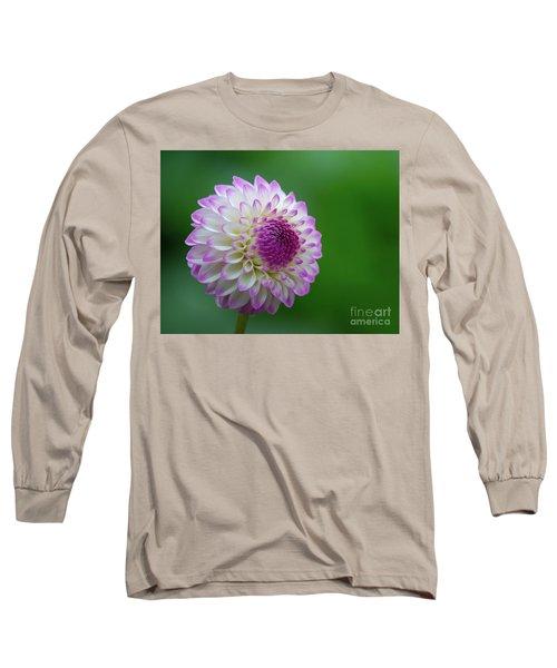 Beautiful Dahlia 1 Long Sleeve T-Shirt