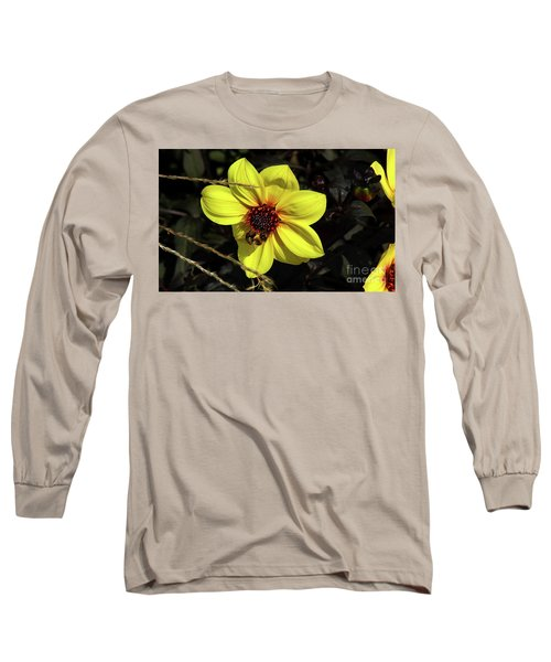 Bee At Work Long Sleeve T-Shirt