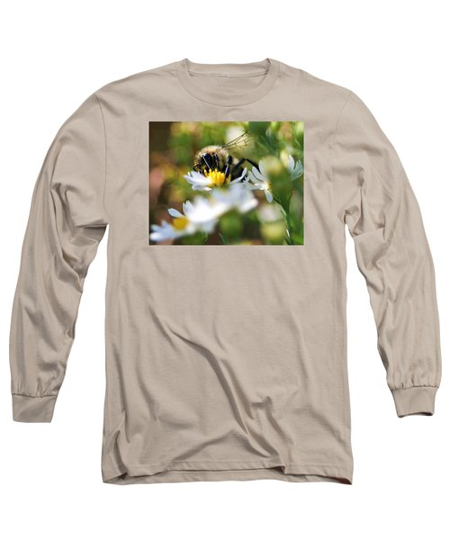 Bee On Aster Long Sleeve T-Shirt