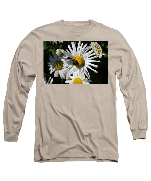 Bee On Flower 1 Long Sleeve T-Shirt