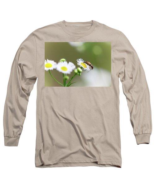 Beetle Daisy Long Sleeve T-Shirt