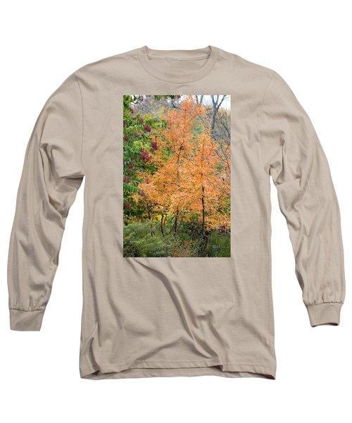 Before The Fall Long Sleeve T-Shirt by Deborah  Crew-Johnson