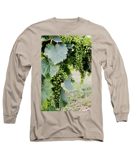 Before The Harvest Long Sleeve T-Shirt
