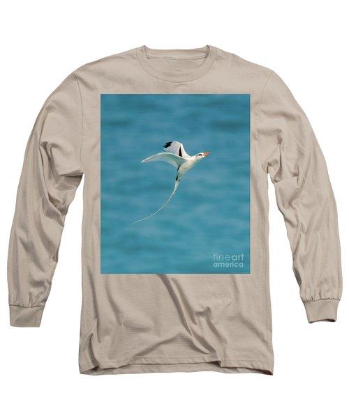 Bermuda Longtail S Curve Long Sleeve T-Shirt