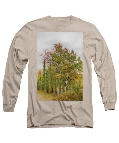 Birch Tree #1 Long Sleeve T-Shirt