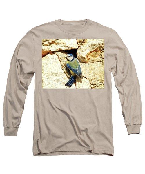 Bird Feeding Chick Long Sleeve T-Shirt