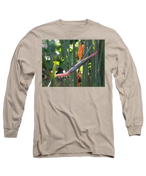 Bird Of Paradise Dripping Long Sleeve T-Shirt