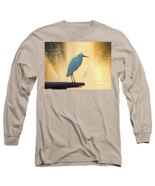 Birds And Fun At Butler Park Austin - Birds 3 Detail Macro Long Sleeve T-Shirt