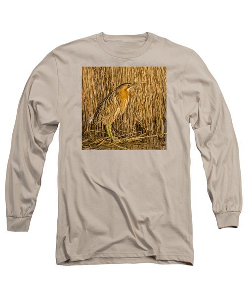 Bittern Botaurus Stellaris Long Sleeve T-Shirt