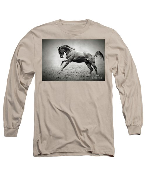Black Horse In Dust Long Sleeve T-Shirt