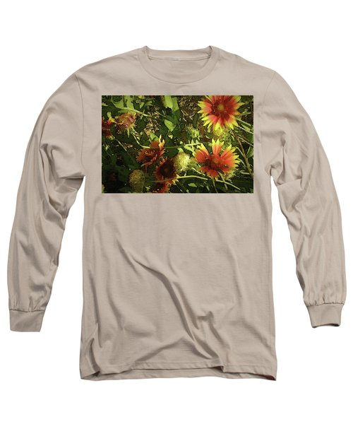 Blanket Flower Long Sleeve T-Shirt by Donna G Smith