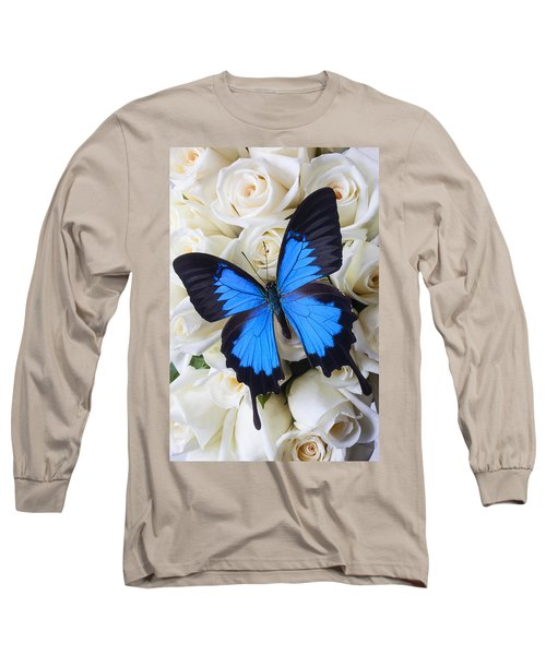 Blue Butterfly On White Roses Long Sleeve T-Shirt