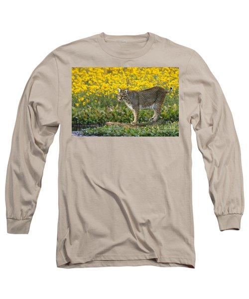Bobcat In The Swamp Long Sleeve T-Shirt by Myrna Bradshaw