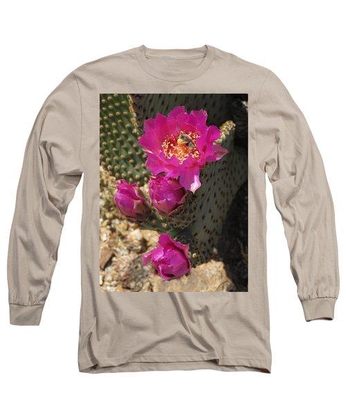 Borrego Springs Bloom 6 Long Sleeve T-Shirt