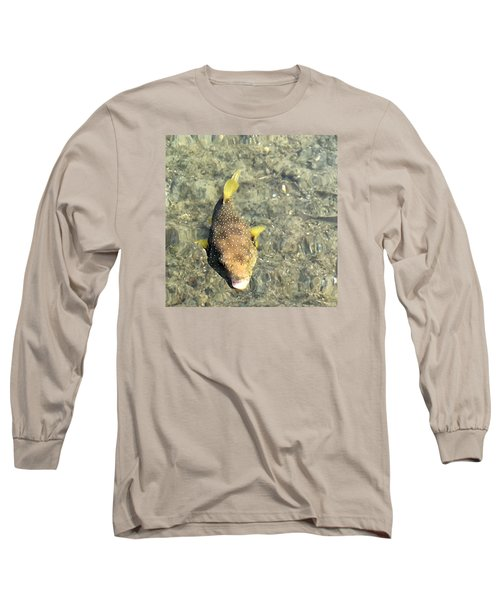 Long Sleeve T-Shirt featuring the photograph Box Fish - 1 by Karen Nicholson