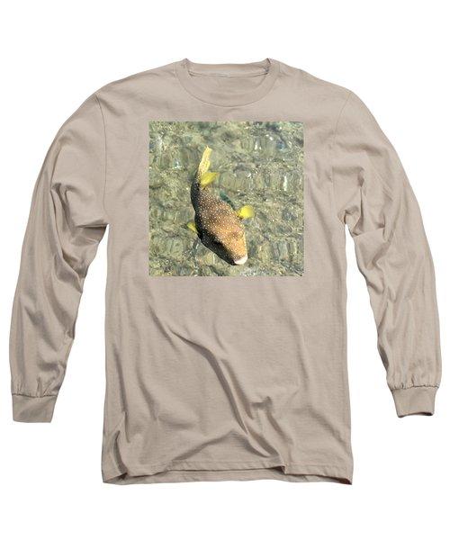 Box Fish - 2 Long Sleeve T-Shirt by Karen Nicholson