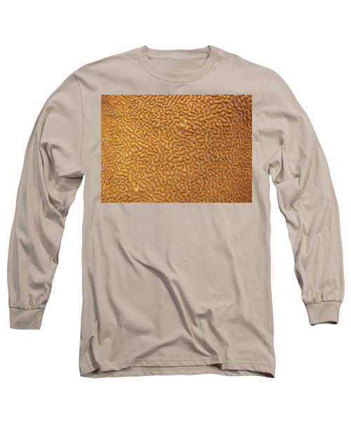 Brain Coral 47 Long Sleeve T-Shirt by Michael Fryd