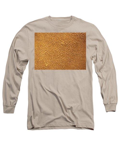 Brain Coral 47 Long Sleeve T-Shirt