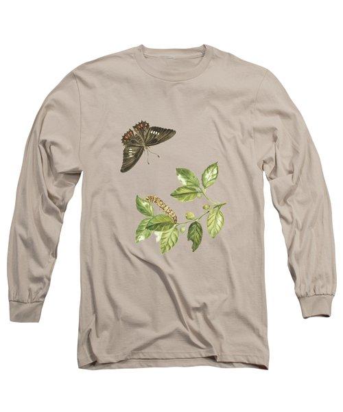 Branch Of A Limmetijen Tree Wild In Surinam By Cornelis Markee1763 Long Sleeve T-Shirt