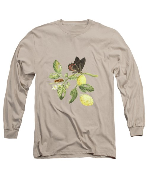 Branch Of A Limmetijen Tree With Caterpillar And Butterfly By Cornelis Markee 1763 Long Sleeve T-Shirt