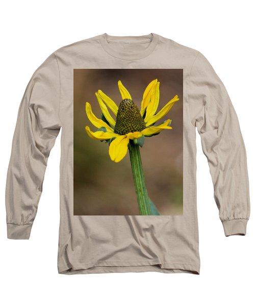 Bright And Shining Long Sleeve T-Shirt by Deborah  Crew-Johnson