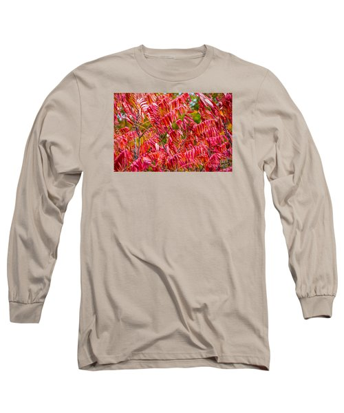 Bright Red Leaves Long Sleeve T-Shirt