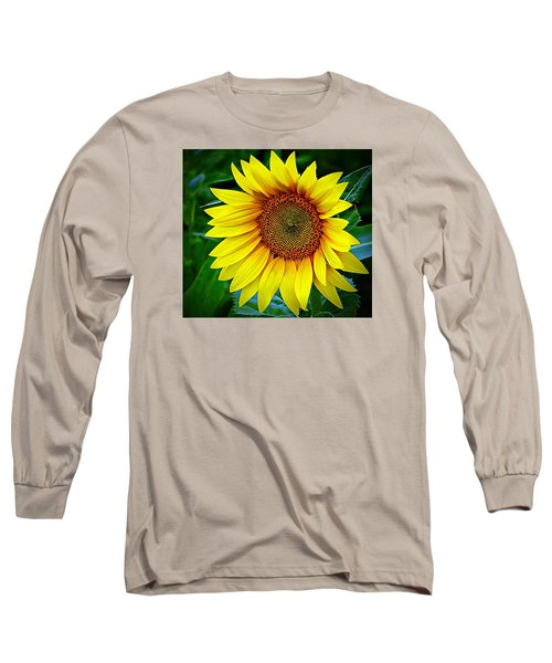 Brighten Your Day Long Sleeve T-Shirt