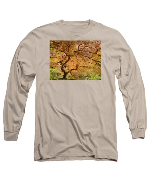 Long Sleeve T-Shirt featuring the photograph Brilliant Japanese Maple by Wanda Krack