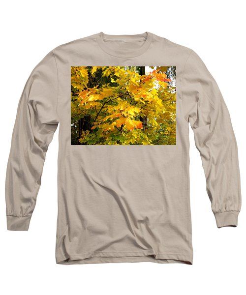 Brilliant Maple Leaves Long Sleeve T-Shirt by Will Borden