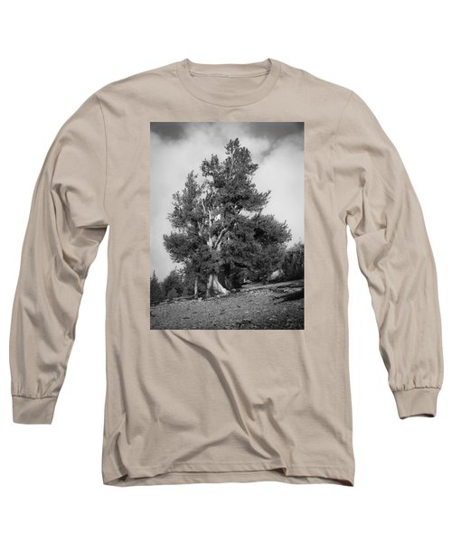 Bristlecone Pine Long Sleeve T-Shirt